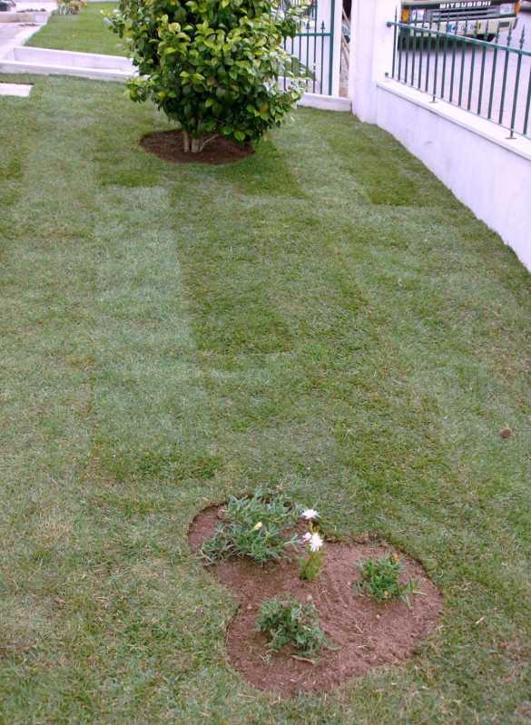 Construção de Jardins Paineiras do Morumbi - Construção de Jardins para Condomínios