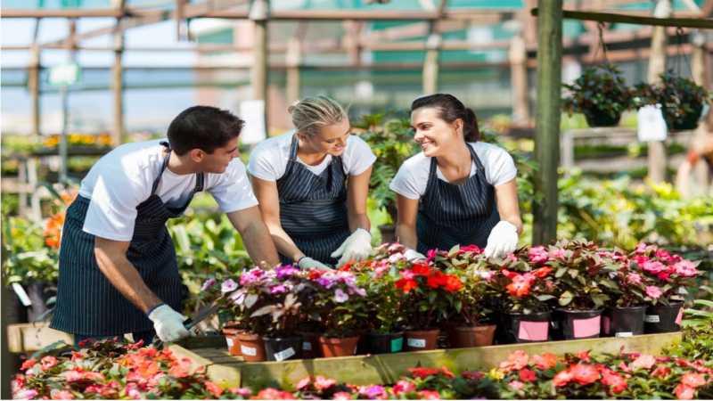 Empresa de Montagem Vaso de Flores Jardim Luzitânia - Empresa de Montagem Vaso Planta
