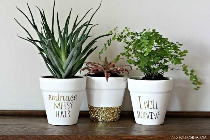 Empresa de Montagem Vaso Planta Embu Guaçú - Empresa de Montagem Vaso Planta