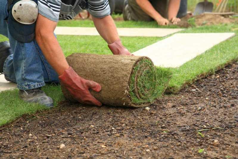 Implantação e Manutenção de Jardins Vila Uberabinha - Empresa de Manutenção de Jardins