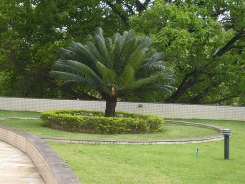 Manutenção de Jardins Paisagismo Preço Chácara Flora - Empresa de Manutenção de Jardins