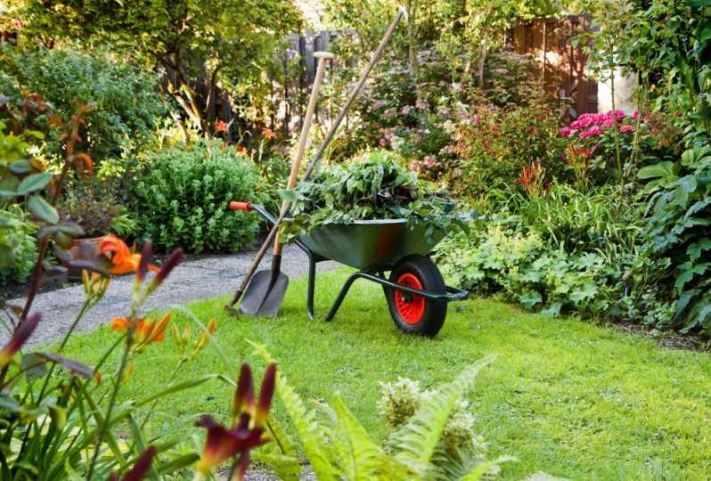 Manutenção Jardins Água Rasa - Empresa de Manutenção de Jardins