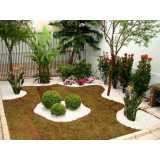 construção de jardins e paisagismo