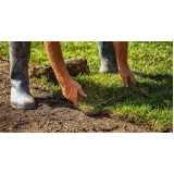 construção e manutenção de jardins preço Vila Mirante