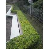 construção e manutenção para jardins preço Água Rasa