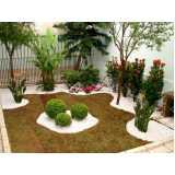 contratar empresa de jardinagem e limpeza Tucuruvi