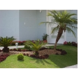 contratar empresa de jardinagem e paisagismo Centro