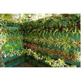 controle de pragas na jardinagem valores Vila Formosa