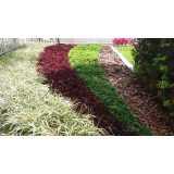 empresa de jardinagem Indianópolis
