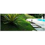 empresa de manutenção de jardins em condomínios Raposo Tavares