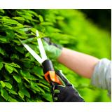 empresa de manutenção de jardins preço Vila Curuçá