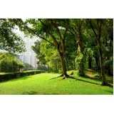 empresa de manutenção e conservação de jardins Barro Branco