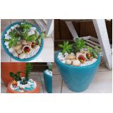 Empresa de Montagem de Vasos com Suculentas