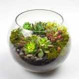 Empresa de Montagem de Vasos de Vidro