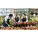 Empresa de Montagem Vaso de Flores