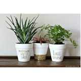 Empresa de Montagem Vaso Planta