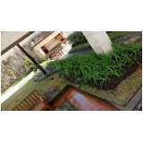 empresa de serviço de paisagismo com paisagismo Bairro do Limão