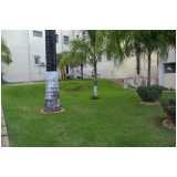 empresa de serviços de paisagismo e jardinagem Rio Pequeno