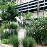 firma de jardinagem e paisagismo Vila Romana
