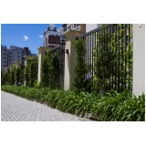 manutenção de jardins paisagismo Santana