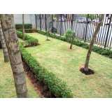 manutenção em jardins Alto da Boa Vista