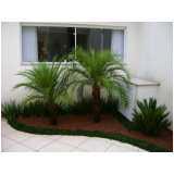 manutenção em jardins