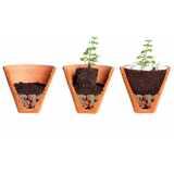 montagem vaso planta valor Vila Mazzei