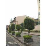 preço de poda de árvores de jardim Jardim Bonfiglioli