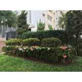 preço de poda de jardim profissional Vila Endres