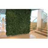 preço de poda de jardim vertical Biritiba Mirim