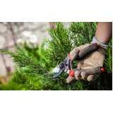 preço de poda para plantas de jardim Luz