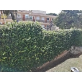 qual o preço de serviço de jardinagem e manutenção Panamby