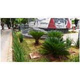 quanto custa serviço de jardinagem para praças Vila Chica Luíza