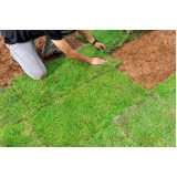 reforma de jardim em condomínios Região Central