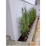 reforma de jardim pequeno Santo André