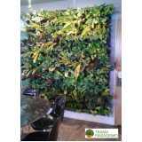 reforma de jardim vertical
