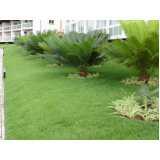 serviço de jardinagem com paisagismo preço Bom Retiro