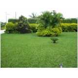 serviço de jardinagem com paisagismo Parque Maria Domitila