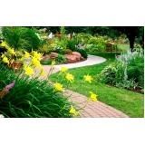 serviço de jardinagem com poda Tatuapé