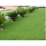 serviço de jardinagem e manutenção preço Região Central