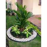 serviço de jardinagem e paisagismo Luz