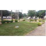 serviço de jardinagem para praças Vila Cruzeiro
