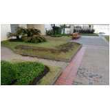 serviço de jardinagem para prédios preço São Bernardo do Campo