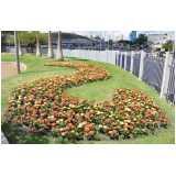 valor de serviço de paisagismo para praças Jardim Paulistano